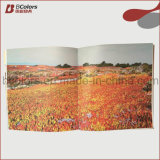 Estado de conservación de impresión, Libro de imágenes Impresión