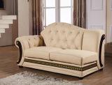 房状のボタンの居間のソファー