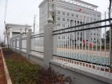 Leicht zusammengebauter bearbeitetes Eisen-Garten-Zaun