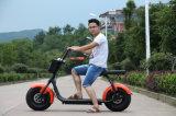浙江2の車輪のCitycocoの電気スクーター