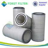 La poussière de Forst trois cosses a plissé la cartouche de filtre à air