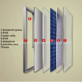 La Cina Hot Selling 300W Monocrystalline Solar/PV Panel