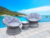 360 градусов поворачивая напольный ротанг/Wicker мебель сада отдыха