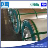 Galvanisiertes Eisen-Stahlblech im Ring