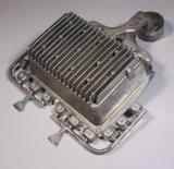L'intercapedine di alluminio di comunicazione della pressofusione