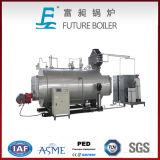Fornitore professionista di caldaia a vapore infornata orizzontale dell'olio del condotto del fumo (gas)