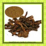 Extrait de Cistanches de herba de médecine d'herbe/herba normaux Cistanche