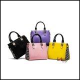 Sacos das mulheres das bolsas da forma de Haoyuan