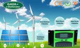 Het vrije Controlemechanisme van de de vertonings ZonneLast van de Steekproef 12V24V 30A 40A 50A 60A LCD voor het Systeem van de ZonneMacht