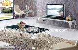 コーヒーテーブル/ステンレス鋼のコーヒーテーブル/大理石の上のコーヒーテーブル/コーヒーテーブルの/Tea現代表Sj813
