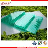 Strati verdi della cavità del policarbonato per il soffitto del tetto