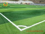 Grama artificial do futebol para o campo de jogos das crianças sem metal pesados