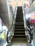 SRH Safe und Stable Escalator