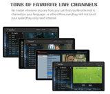 Gesetzter Spitzenkasten des Ipremium Mischling-DVB-S2+DVB-T2+IPTV mit Mickyhop Plattform