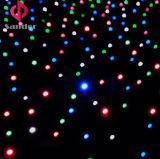 棒、ディスコ、熱い党装飾のためのRGBW LEDの星の布のカーテンLEDのStarlitカーテン