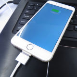 2015 neues Product Magnetic Lightning Cable mit Znaps Adapter für iPhone 6 6 Plus