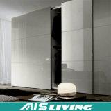 Guardaroba di vetro della camera da letto del portello scorrevole (AIS-W024)