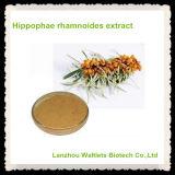 Polvo del polisacárido del extracto de los rhamnoides de Hippophae de la alta calidad