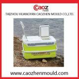 Manufatura profissional do molde/molde plásticos da caixa dos peixes