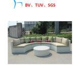 Sofà all'ingrosso di vimini di svago della mobilia di Funriture della mobilia esterna (CF736)