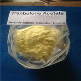 Trenbolone 아세테이트 법적인 스테로이드 분말과 혼합 완성되는 기름 조리법