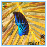 Объективы зеркала цвета Revo для солнечных очков