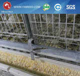 De automatische Apparatuur van het Landbouwbedrijf van Vogels die voor het half Ingesloten Huis van de Kip wordt gebruikt (a-4L120)