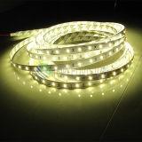 IP65 impermeabilizan la luz de la cinta de 2835 120LEDs LED con alta calidad