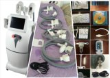 SL-4 het Bevriezen van Cryo Cryolipolysi de Slanke Vette Machine van het Vermageringsdieet van de Machine Koele