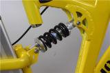 Bicicleta 250W elétrica barata para a bicicleta de montanha elétrica do estilo fresco da venda para a venda