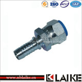 Npsm Female 60degree Cone Hydraulic Coupling (21611)