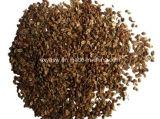 Cnidium Monnieri Auszug 10% 98% Osthole