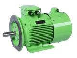 Энергосберегающий электрический двигатель IP23 AC 3 участков преобразования частоты B3 B5 B35 малошумный асинхронный (LY-180M-4) 22 Kw
