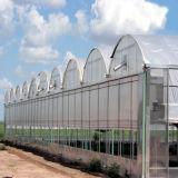 De MultiSpanwijdte van de Apparatuur van de landbouw 10.8m Plastic Po Serre van de Film voor Verkoop