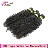 Verwicklung-freie Jungfrau-brasilianisches verworrenes lockiges Haar