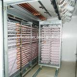 Incubateur d'oeufs de poulet de qualité pour la ferme avicole