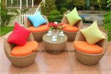 現代屋外の庭のPEの藤のソファーはセットする家具(LL-RST003)を