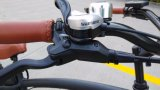 Estructura de aleación de Fast Fat Tire bicicletas de montaña eléctricas Estilo