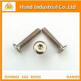 Aço Inoxidável Flat Hex Socket Screw
