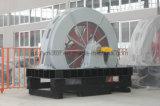 T, motor trifásico de alto voltaje de poca velocidad síncrono de gran tamaño Tdmk1600-40/3250-1600kw de la inducción eléctrica de la CA del molino de bola de Tdmk
