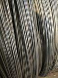 AISI 1022 Spheroidized voor de Productie die van Schroeven wordt onthard