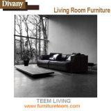 Sofá de madeira moderno Living Teem (D-36)