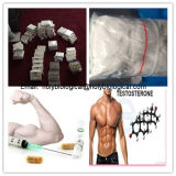 Wirkungsvolles Bodybuilding-Hormon-Steroid Prüfung Enanthate Puder-Testosteron Enanthate