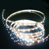 Cinta de 5050 LED, &Tube cristalino impermeable