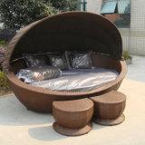 屋外の庭のビーチチェアの藤のプールの家具の柳細工のデッキチェアのSunbedのあるラウンジのベッド