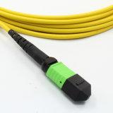 MPO/APC à fibra Patchcord ótico de MPO/APC