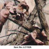 Modelo animal No. LC152A de la película de la impresión de la transferencia del agua del superventas