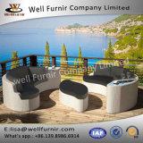 좋은 Furnir T-058 3개 부품 등나무 정원 가구 특별한 디자인 소파 세트