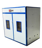 Incubatrice automatica piena fornita fabbrica dell'uovo del pollo per 5280 uova