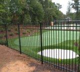 Frontière de sécurité résidentielle personnalisée de jardin de qualité avec la qualité